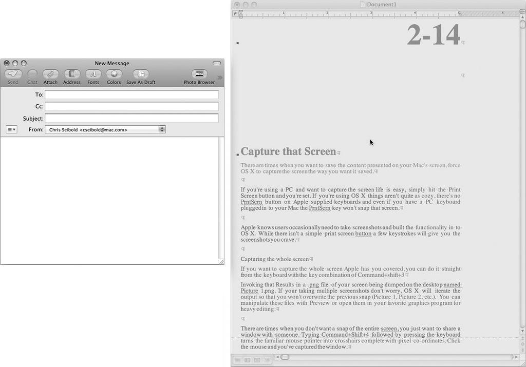 Рис. 3.44. Получение экранного снимка одного окна