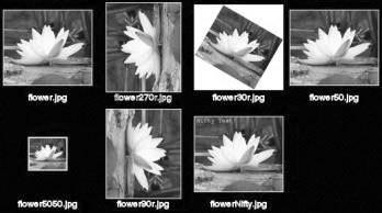 Рис. 4.9. Пример создания монтажа из нескольких картинок