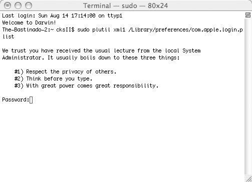 Рис. 5.1. Предупреждение, выводимое при первом запуске команды sudo