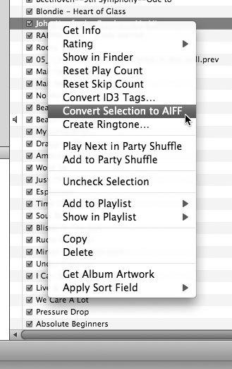Рис. 5.15. Преобразование выбранного файла в формат AIFF