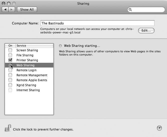 Рис. 6.8. Запуск сервиса общего доступа к Web