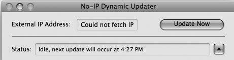 Рис. 6.16. Обратите внимание, что вы лишились возможности использования NoIP!